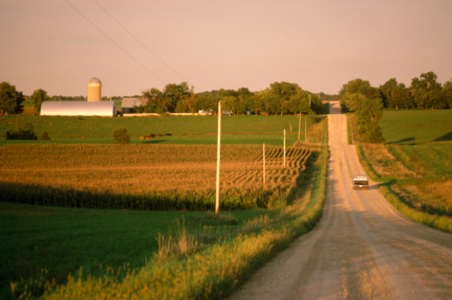 Cable「USA, northern Minnesota, truck on gravel road, rear view」:スマホ壁紙(18)