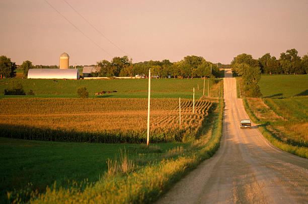 USA, northern Minnesota, truck on gravel road, rear view:スマホ壁紙(壁紙.com)