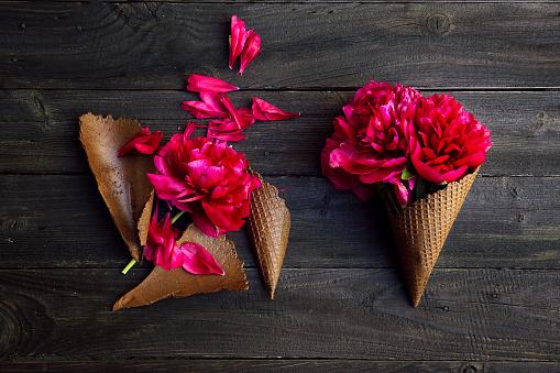 Broken「Conceptual ice-cream cones」:スマホ壁紙(0)