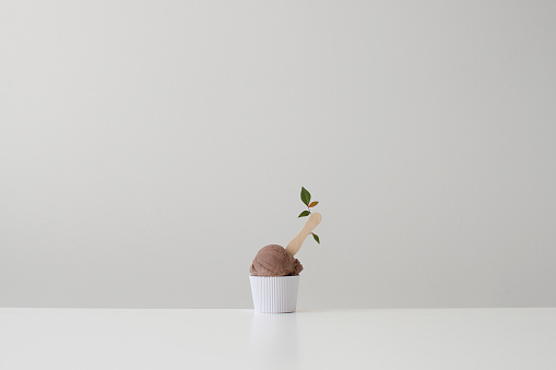 アイスクリーム「Conceptual tub of chocolate ice-cream with flower on a stick」:スマホ壁紙(12)