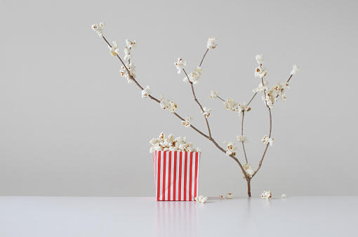 Blossom「Conceptual cherry blossom and a bag of popcorn」:スマホ壁紙(11)