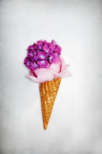 Imagination「Conceptual ice-cream made from flowers」:スマホ壁紙(12)
