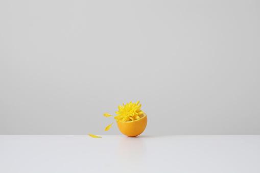 Spraying「Conceptual orange juice spilling out of half an orange」:スマホ壁紙(3)