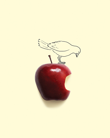 Standing「Conceptual bird on apple with a bite missing」:スマホ壁紙(1)
