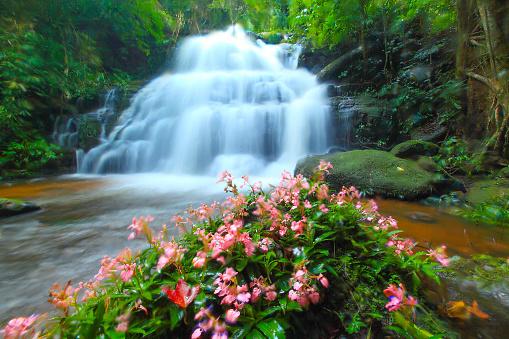 Fern「The beautiful scenery view of Mun Daeng waterfalls, Thailand」:スマホ壁紙(18)