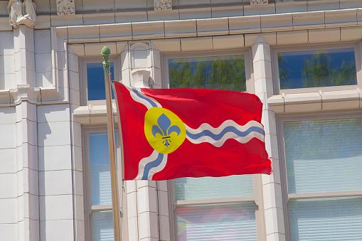 Fleur De Lys「St. Louis flag fluttering in wind」:スマホ壁紙(11)