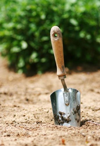 掘る「園芸」:スマホ壁紙(9)