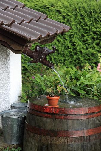 Dragon「Gardening」:スマホ壁紙(15)