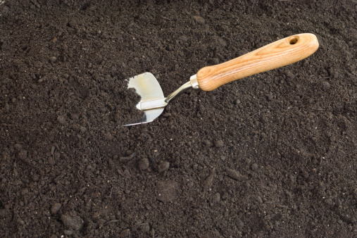 Planting「Gardening」:スマホ壁紙(15)