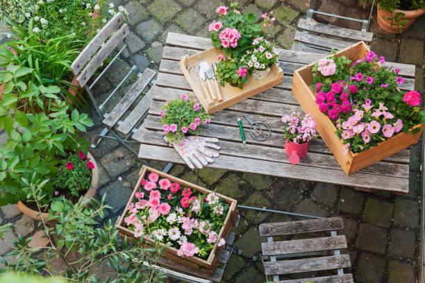 Gardening, planting of summer flowers:スマホ壁紙(壁紙.com)