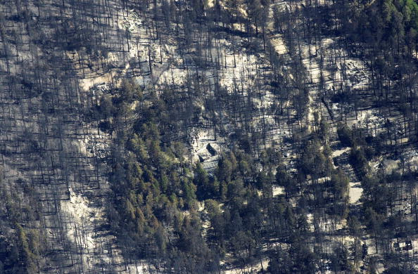 Norma Jean Gargasz「Aspen Fire Continues To Burn In Arizona」:写真・画像(11)[壁紙.com]