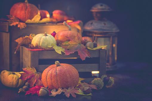 栗「装飾の秋背景」:スマホ壁紙(11)