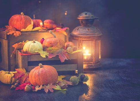 栗「装飾の秋背景」:スマホ壁紙(15)