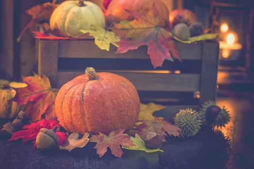 栗「装飾の秋背景」:スマホ壁紙(13)