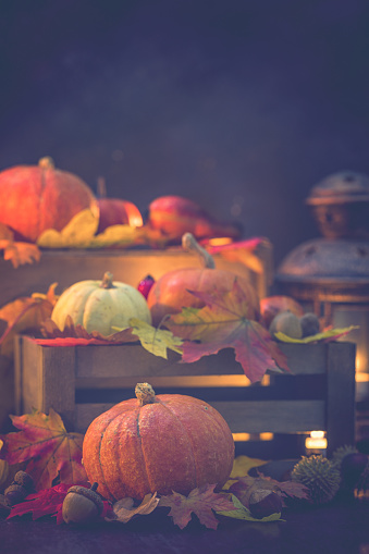 栗「装飾の秋背景」:スマホ壁紙(14)