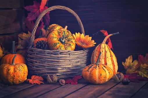 葉・植物「装飾の秋のバスケット」:スマホ壁紙(12)