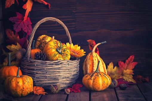 Celebration「装飾の秋のバスケット」:スマホ壁紙(14)