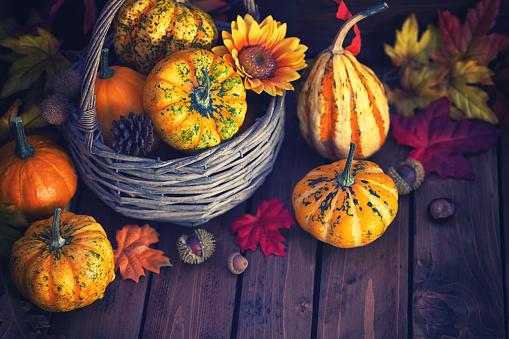 葉・植物「装飾の秋のバスケット」:スマホ壁紙(18)