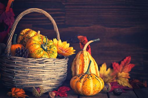 葉・植物「装飾の秋のバスケット」:スマホ壁紙(17)