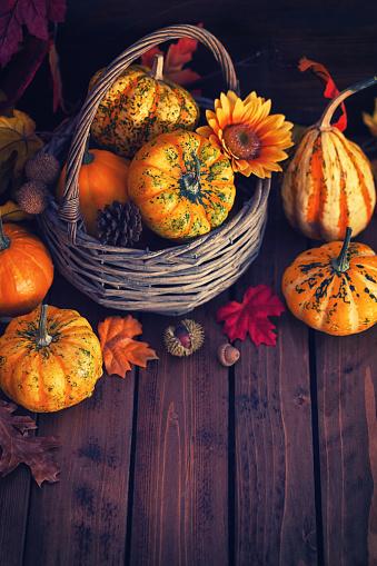 葉・植物「装飾の秋のバスケット」:スマホ壁紙(11)