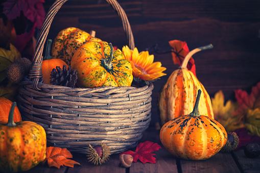 葉・植物「装飾の秋のバスケット」:スマホ壁紙(14)