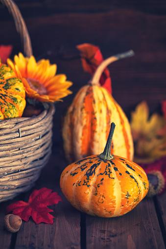 葉・植物「装飾の秋のバスケット」:スマホ壁紙(13)