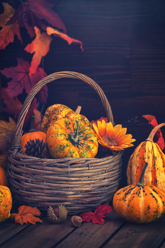 葉・植物「装飾の秋のバスケット」:スマホ壁紙(8)
