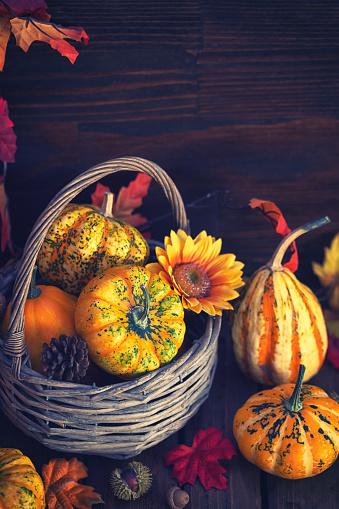 葉・植物「装飾の秋のバスケット」:スマホ壁紙(15)