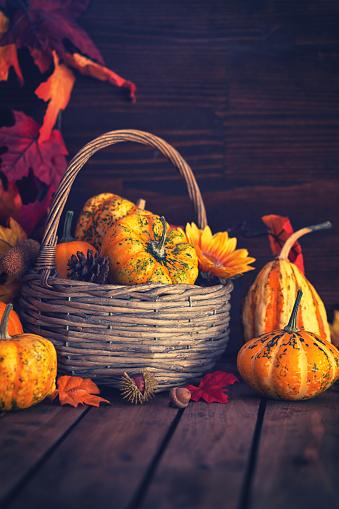 葉・植物「装飾の秋のバスケット」:スマホ壁紙(16)