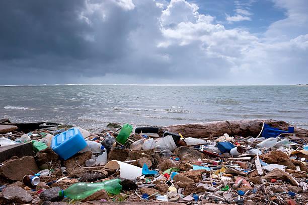 trash on the beach:スマホ壁紙(壁紙.com)