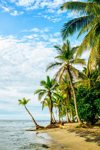 Central America「Costa Rica, Chiquita Beach」:スマホ壁紙(7)