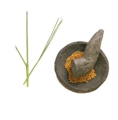 Mortar and Pestle「Lemon grass stalk next to mustard seeds in mortar and pestle, studio shot」:スマホ壁紙(2)