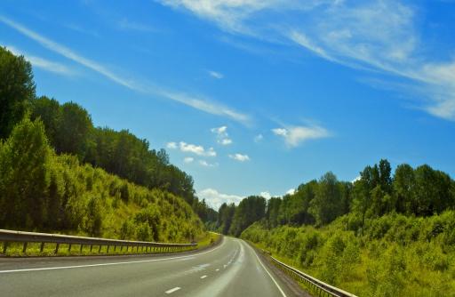Motor Racing Track「Forest Highway」:スマホ壁紙(7)