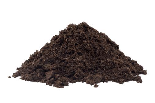 Peat「Heap of Compost」:スマホ壁紙(1)
