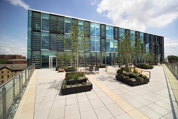 造園「East Thames Housing association, stratford, London, UK」:写真・画像(11)[壁紙.com]