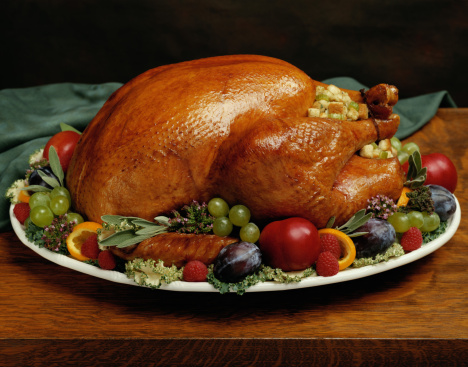 Stuffed Turkey「Holiday Turkey」:スマホ壁紙(5)