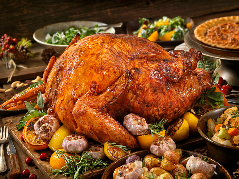 Turkey - Bird「Holiday Turkey Dinner」:スマホ壁紙(1)