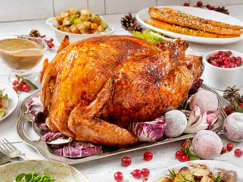 Turkey - Bird「Holiday Turkey Dinner」:スマホ壁紙(6)