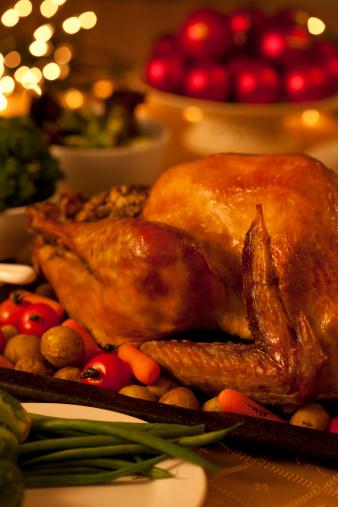 Stuffed Turkey「Holiday Turkey Dinner」:スマホ壁紙(9)
