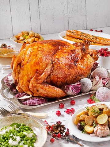 Potluck「Holiday Turkey Dinner」:スマホ壁紙(19)
