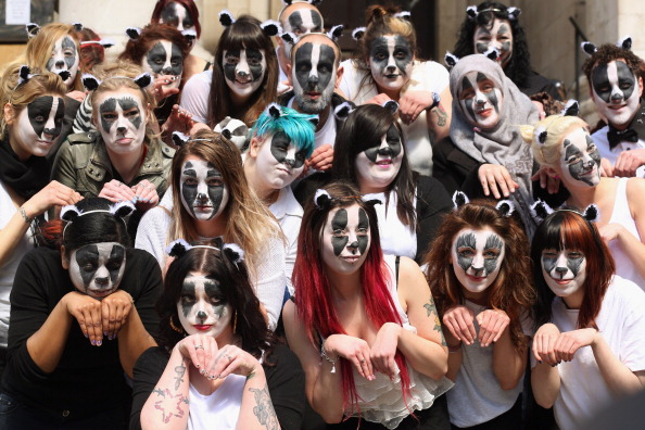 Environmental Issues「Badger Cull Protest」:写真・画像(18)[壁紙.com]