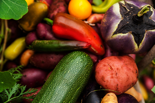 Munich「Different organic vegetables」:スマホ壁紙(15)
