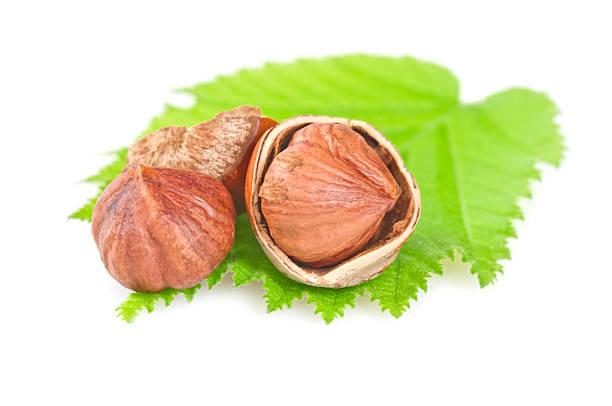 Hazelnuts on leaf:スマホ壁紙(壁紙.com)
