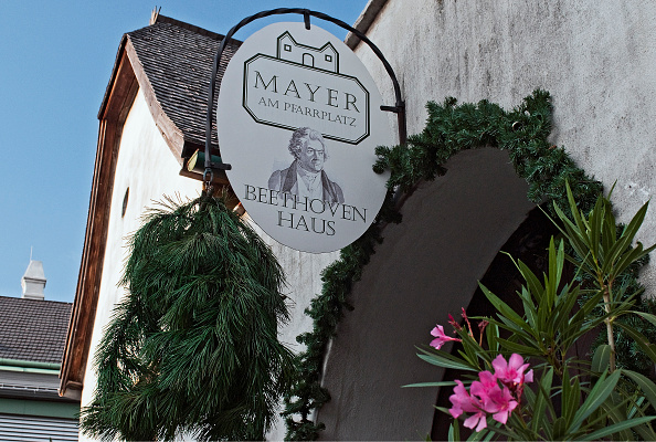 Winemaking「Winery ' Mayer Pfarrplatz  'Vienna」:写真・画像(19)[壁紙.com]