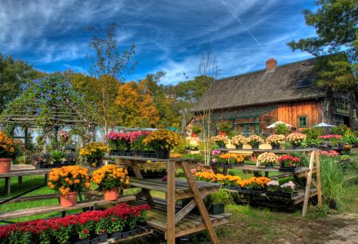 Garden Center「HDR Fall at the Garden Center」:スマホ壁紙(8)