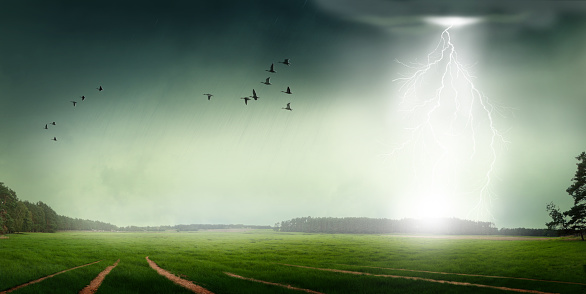 Flock Of Birds「Heavy rain and lightning stroke」:スマホ壁紙(19)