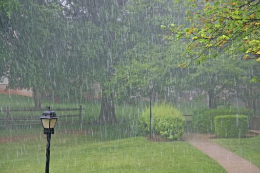 雨「大雨の公園」:スマホ壁紙(11)