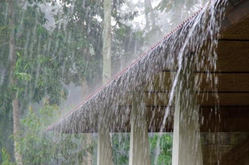 雨「大雨」:スマホ壁紙(15)