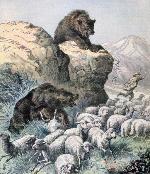 Animals Hunting「Bears of the Cagyre, 1891. Artist: F Meaulle」:写真・画像(4)[壁紙.com]