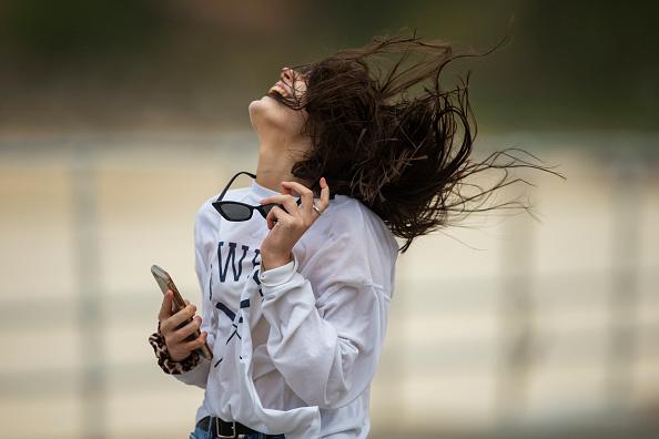 風「Wild Winds Buffet Sydney」:写真・画像(18)[壁紙.com]